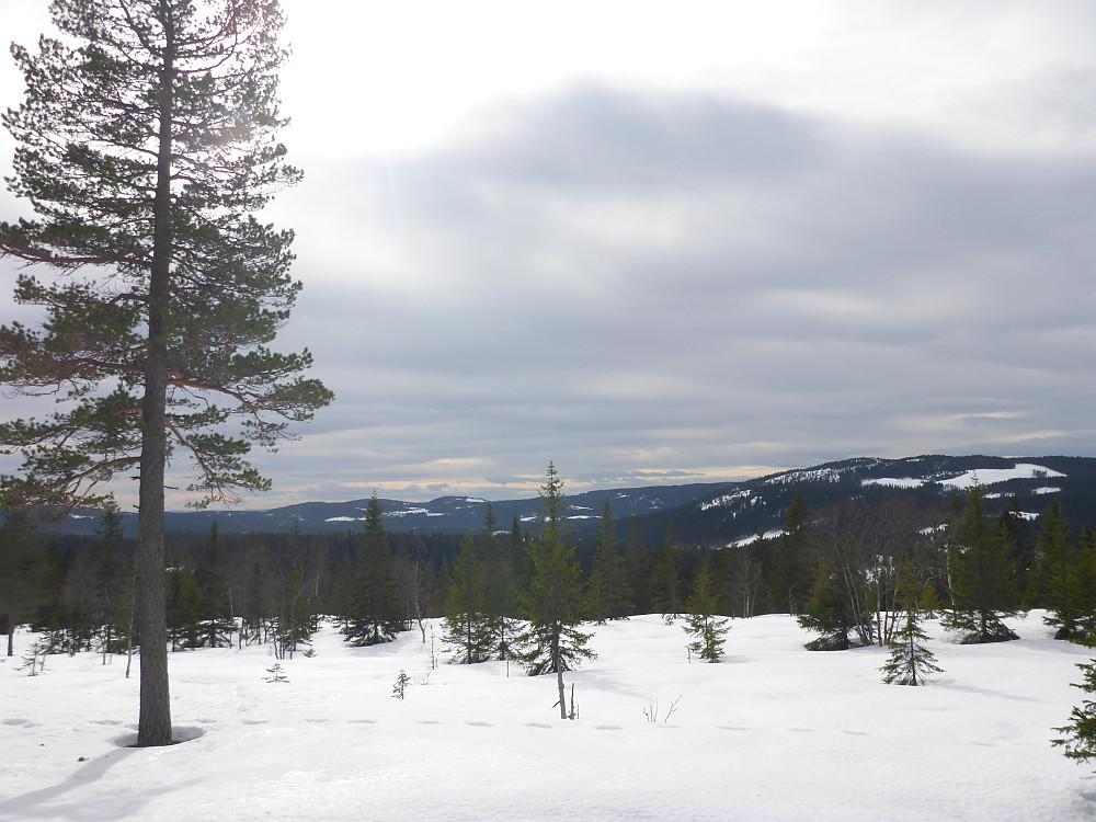 Vestover vest for Barlindhøgda. Heikampen i midten, og Kikut-toppen og Porthøgda til høyre