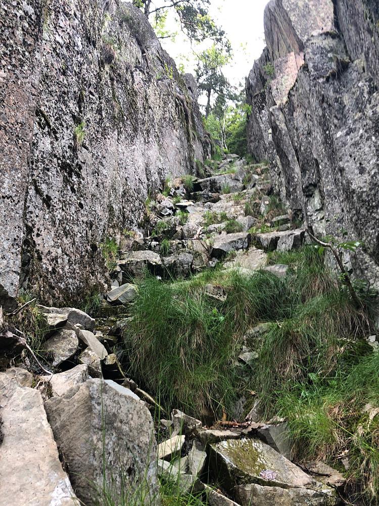 Stairway to heaven - Lett klyving i Skaret fra Setertjern rett opp til Nordre Kolsås