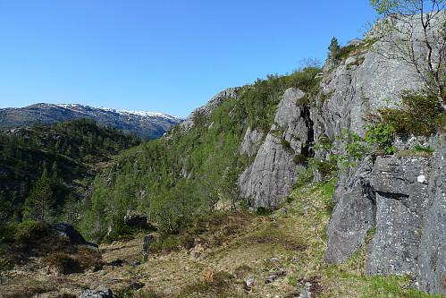God hjortesti på nedsiden av fjellet