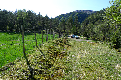 Skogsveien som starter ved parkeringen utenfor grinden