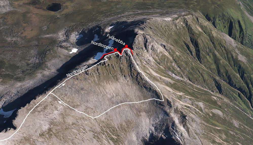Ruta mi opp Nordryggen til toppen, senere ned på vestsiden og tilbake til skiene. Selve terrengmodellen hentet fra ArcGIS, Norge i 3D.