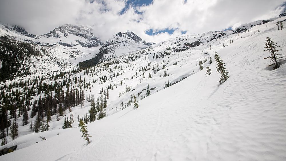 På tur opp mot Illecillewaet Glacier