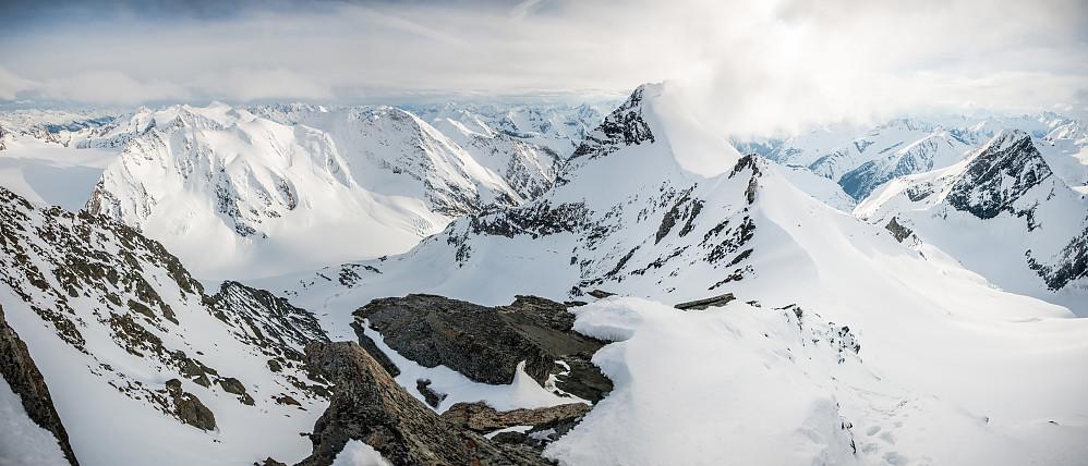 Panorama fra Mount Selwyn