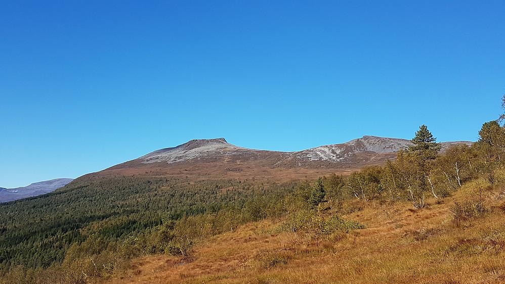 Nesten tilbake ved bilen - tilbakeblikk mot Dalefjellet og Ryptinden