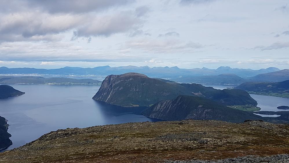 Rødvenhalvøya