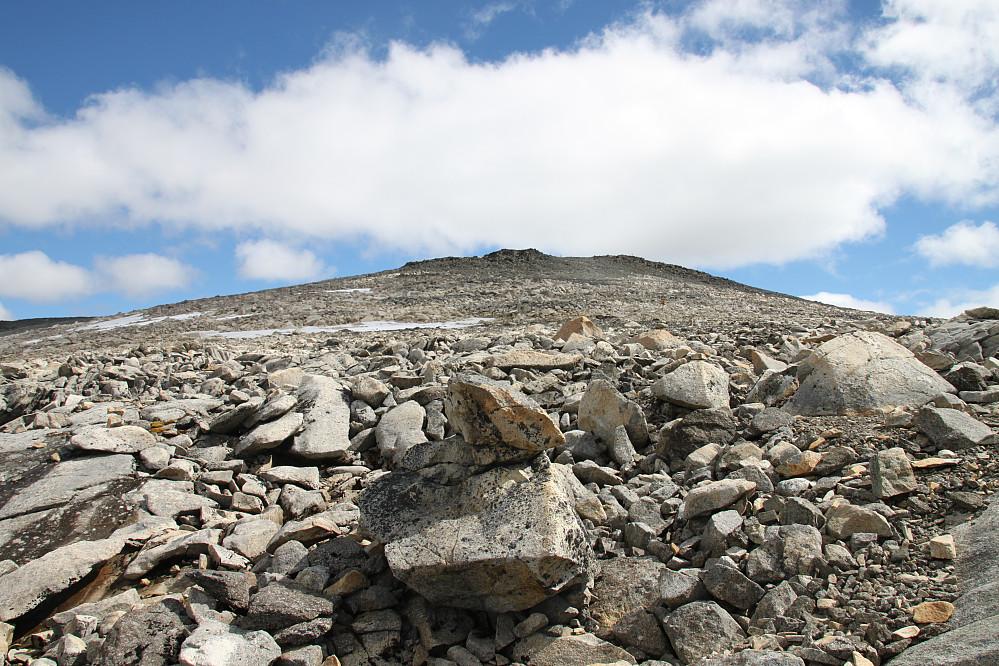 Toppen sees fra nødbua - bare 600 m igjen