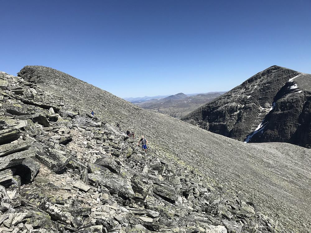 Høgronden og Midtronden Aust sett fra ryggen mot Midtronden