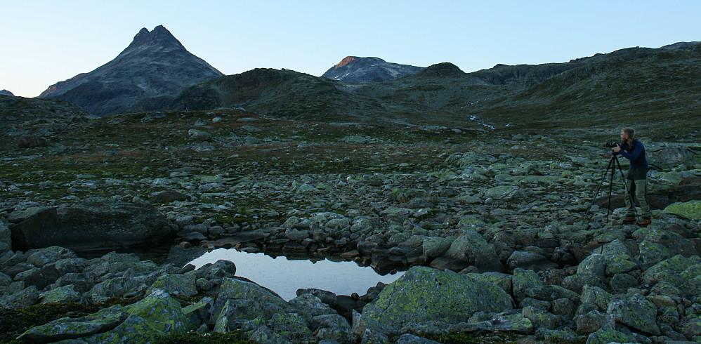 Kveldsstemning i Koldedalen, med Uranostinden i bakgrunnen.