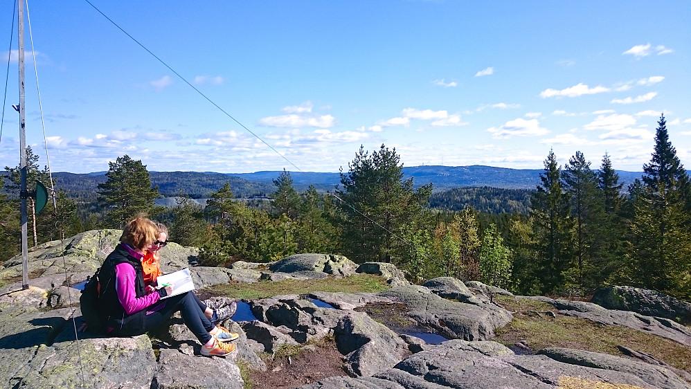 Fra toppunktet på Nordre Kolsås, sett mot vest