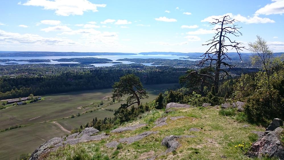 Utsikt fra Gråmagan mot bl.a. Oslofjorden