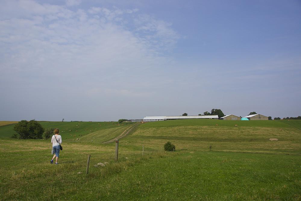 Utsikt mot Møllehøj, på vei fra Møgelhøj