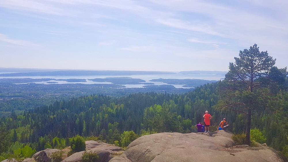Deler av Oslofjorden sett fra et av utsiktspunktene sør for Nordre Kolsås