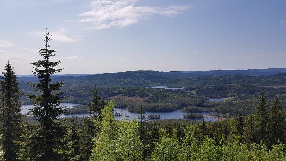 Øyungen og Rottungen sett fra utsiktspunktet på Sellanrå