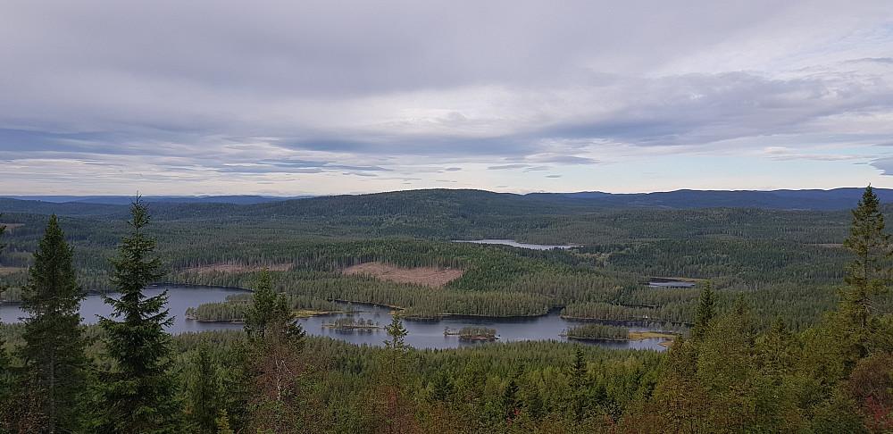 Øyungen og Rottungen sett fra et av utsiktspunktene i nærheten av Mellomkollen