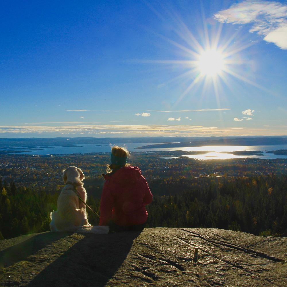 Oslofjorden sett fra Nordre Kolsås