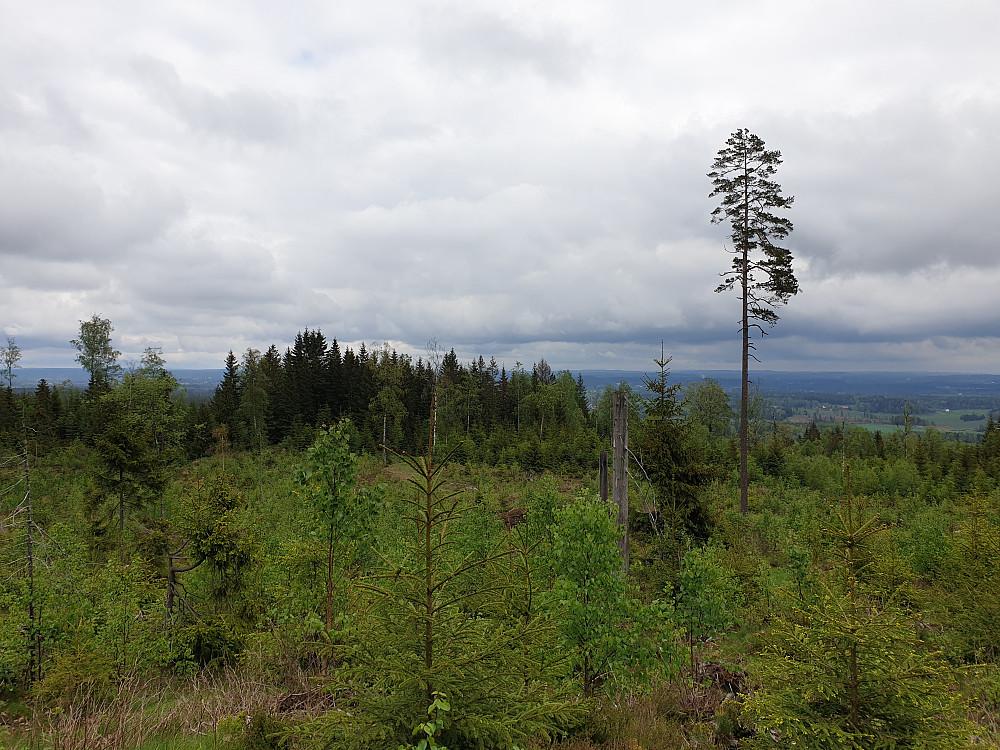 Utsikt fra Sundbyvarden