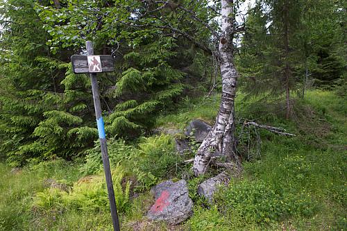Finnskogleden, nylig oppfrisket med fersk blåmaling, passerer Styggberget, men går ikke om toppen.