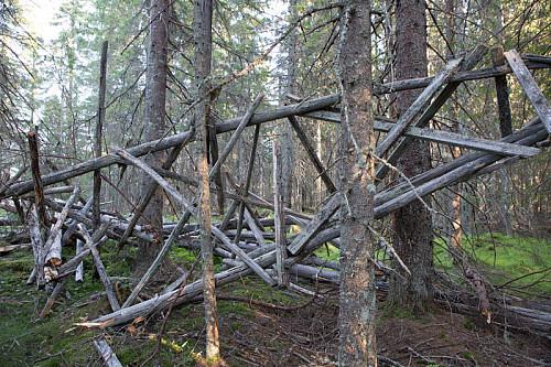 Tårnet over trigpunktet i Borgåsen har forlengst fylt sin funksjon. Det forteller sin tause historie om oppmålingen av landet, inntil det er slukt av skogen.