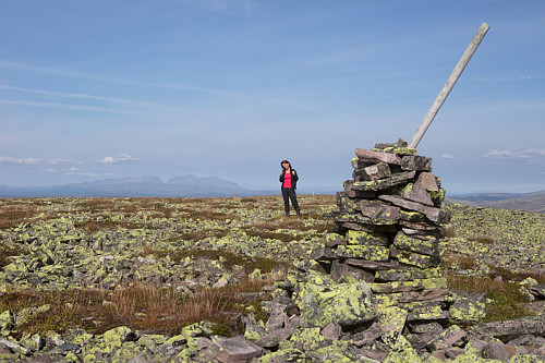 Toppen av Storelthøa. Kommunedele langsetter fjellet. Staker langs grensa Engerdal/Rendalen.