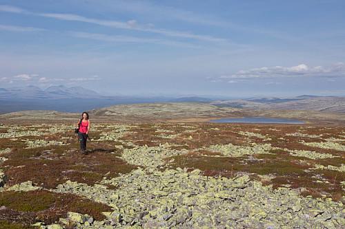 Utsikt nordover fra Storelthøa. Kirsten med Sølenmassivet og Skjærbekktjernet i bakgrunnen.