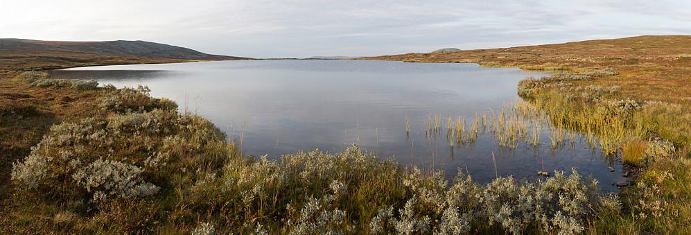 """Veslelttjernet ligger på grensen mellom Trysil og Engerdal. Og ikke bare det; det ligger på vannskillet. Utløpet er nordover og danner åa Senna. Mens Elta som går sørover starter """"av seg selv"""" like nedenfor tjernet."""