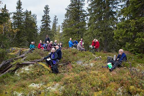 Nistespising på toppen. Her går kommunegrensa mellom Elverum og Våler.