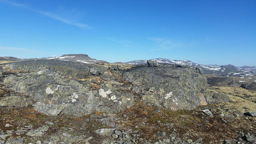 Topp-platået på Volldalsnosi. Ø. Salen bak.