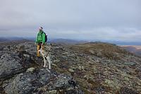 Toppen av Fauskånebba, et godt stykke sør-øst for den store varden.