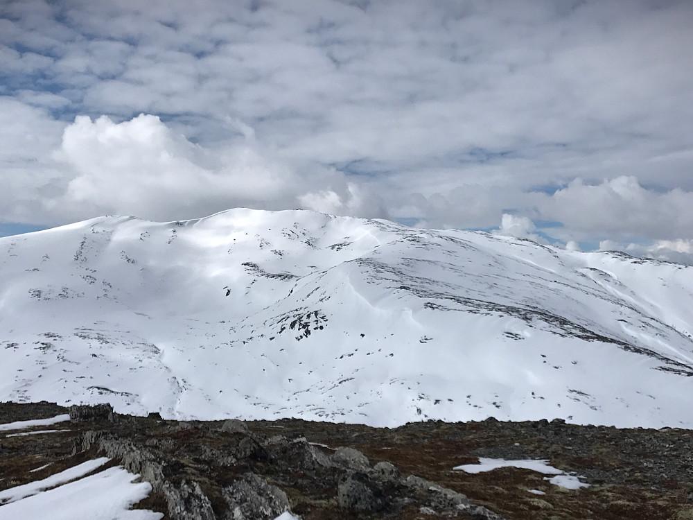 Ingen varde på toppen av Tverrfjellet. Her er det Ruten som pryder bakgrunnen. Massevis av gamle skispor ned bollen fra toppen.