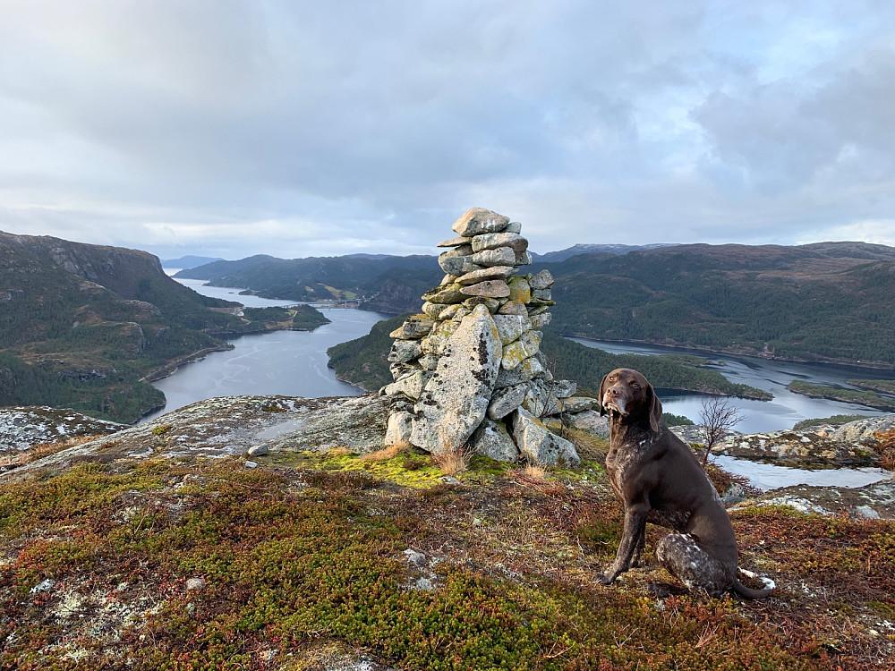 Utsikt mot vest og den nye brua som kommer over Sagfjorden mot Mjønes.