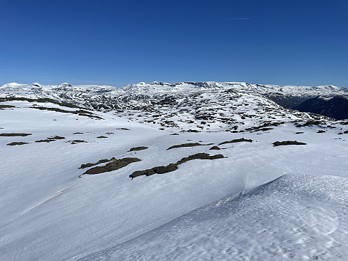Fra Krosshøe (1627 m) mot nord.