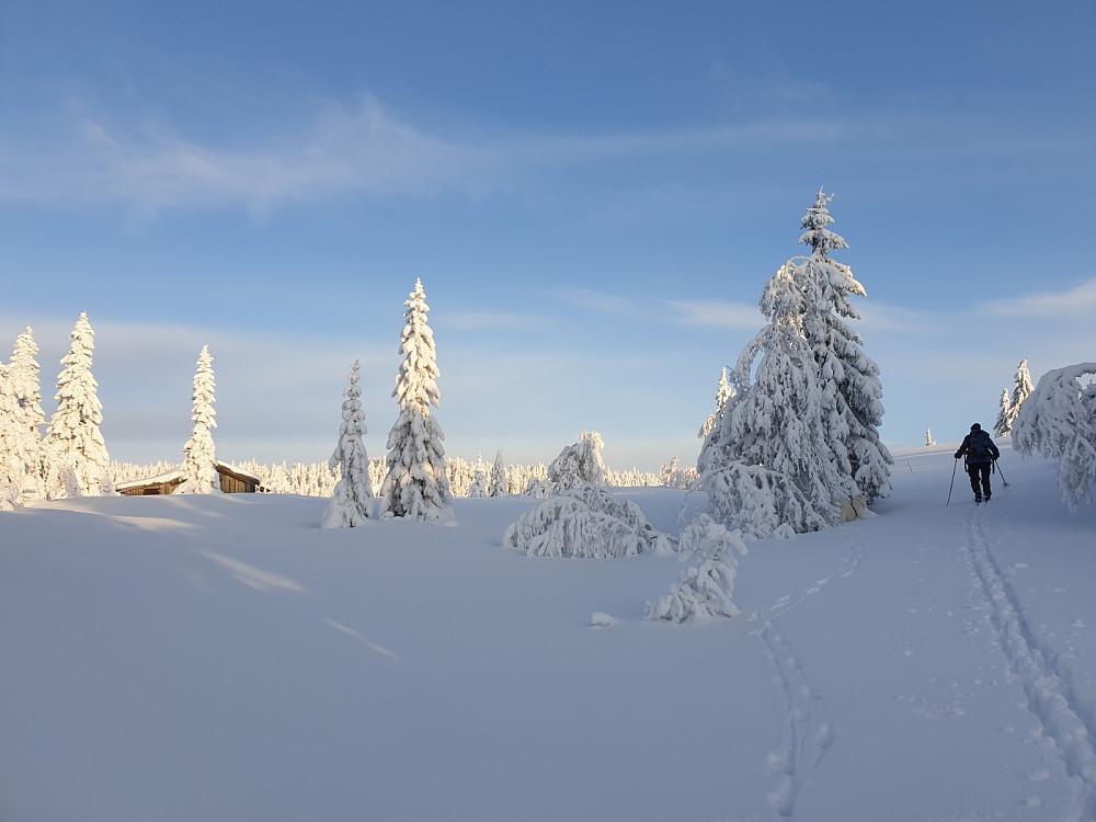 Vakkert på Deset Nordseter