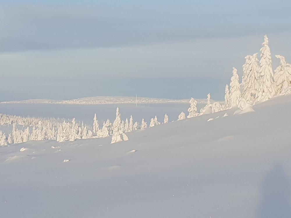 Gråfjellet i det fjerne, tåka ligger over Storkjølen