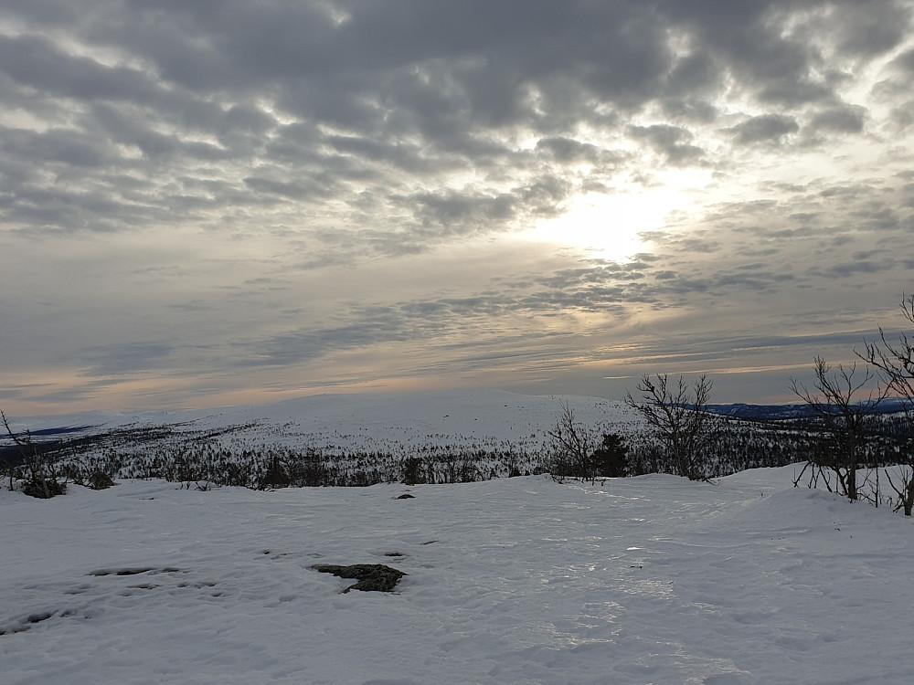 Utsikt mot Renåfjellet 1028 moh, tatt fra Renåskarven 962 moh