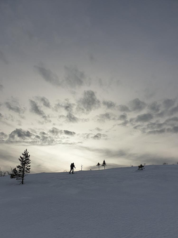 På vei opp ryggen til Renåfjellet