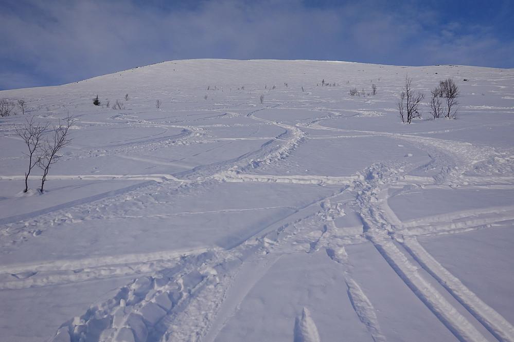 Vært noen skiløpere her de siste dagene.