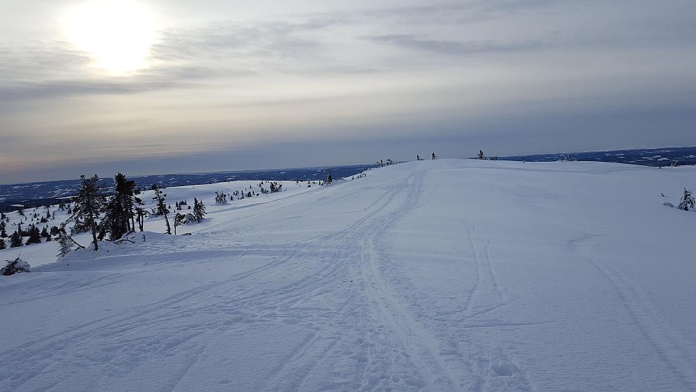 På Sjusjøfjellet øst