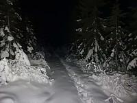 På vei mot Hørtekollen i mørket