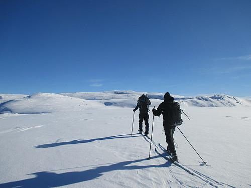 På det vide topplatået på Sveigen i drøye 1450m høyde med selve toppen i sikte bakerst