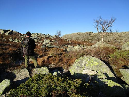 Vegvisar mot Krøys ved utløpet av Svarefjellstjødna