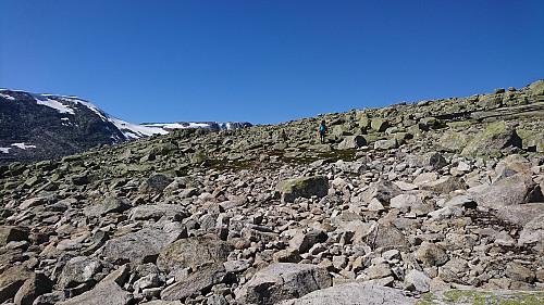Jeg måtte gå i mye steinete landskap