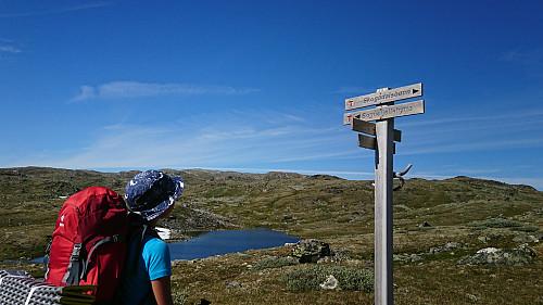 Vi sa kjapt farvel til Sognefjellshytta og satte kurs mot Skogadalsbøen