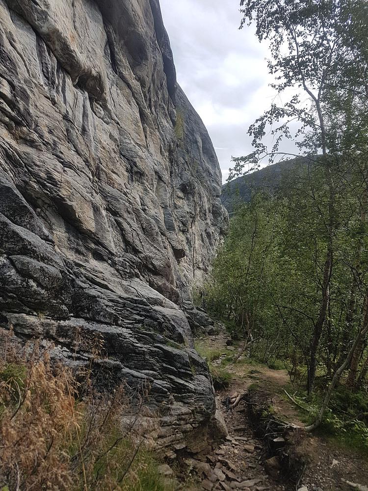 Bratthammeren - Inspirerende klatrevegg