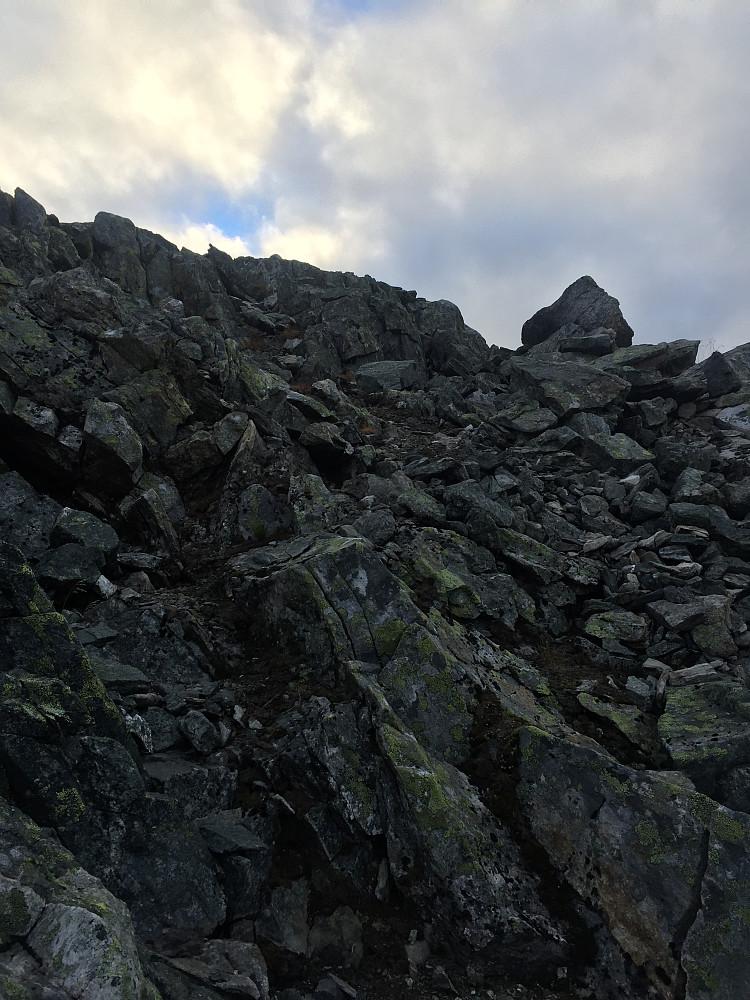 Steinur helt på toppen av Sølvberget.