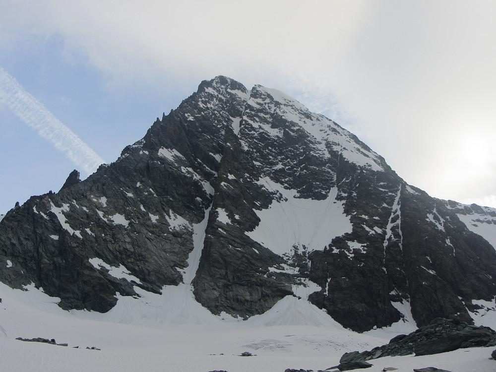 Normalruten som vi gikk går opp på høyre side, den brattere Studlgrat-ruten følger ryggen opp fra venstre side