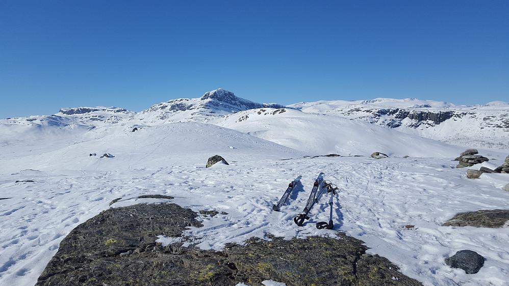 Fra en høyde sørøst for Grønekinnkampen. Bitihorn i midten.