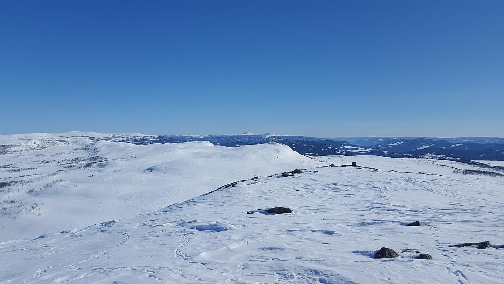 Utsikt mot sørøst fra en høyde ved Grønekinnkampen. Rundemellen (venstre) og Skarvemellen bakerst i midten.