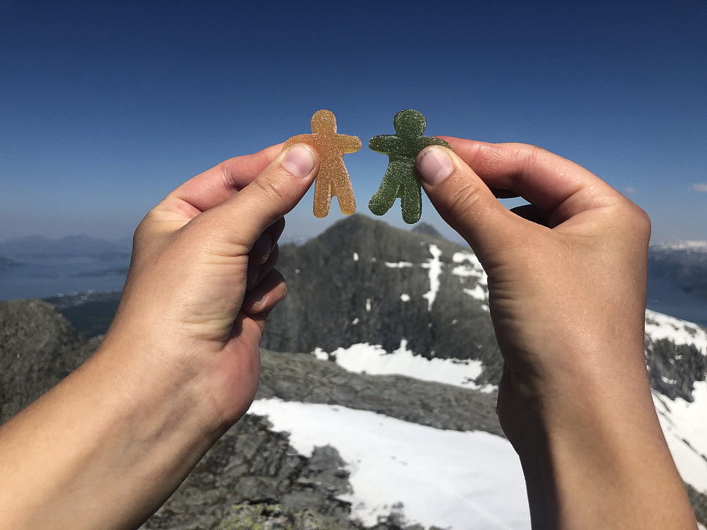 På toppen av Tvillingan Sørtoppen. Seigmenn på toppen av Skjerdingen