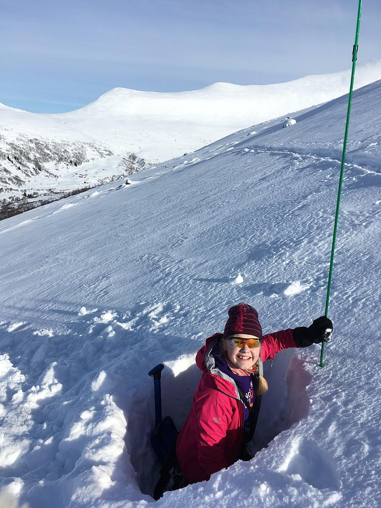 """Vi øver oss på å lese snøen og sjekke lagene ved snupunkt oppom """"Hølå"""" og rett nedom ryggen. 80 cm snø fordelt på 20 cm grovkornet skare nederst, deretter 50 cm tettpakka snø med 10 cm pudder øverst."""