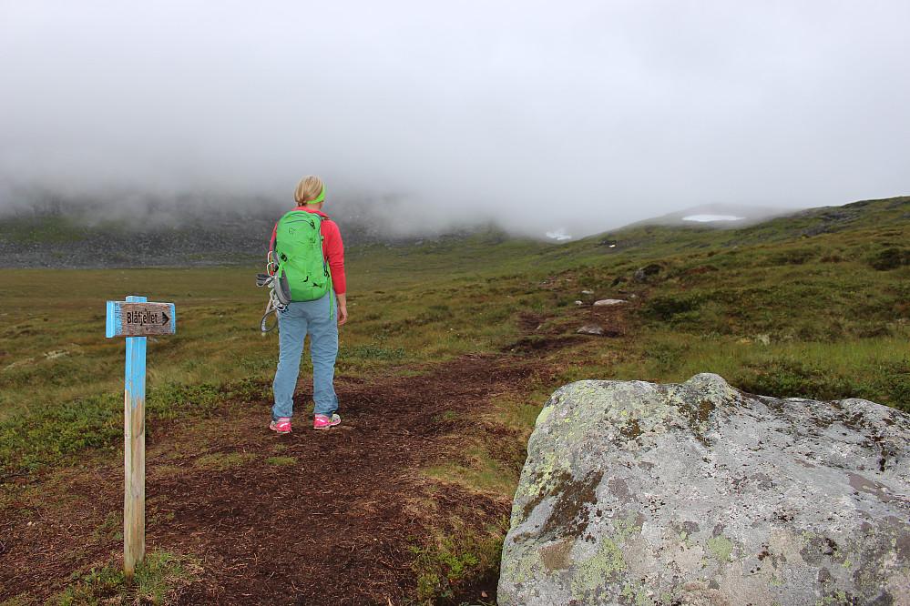 Skodda nådde Sandvikskaret før oss. Blånebu ligger bak skodda rett foran Astrid i bildet, knappe 600 høydemeter over oss.